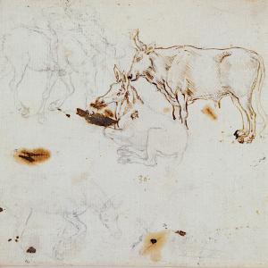 lithograph by leonardo da vinci