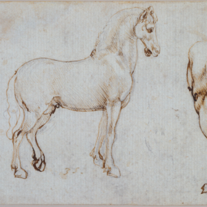 Leonardo da Vinci from the Queen's Collection