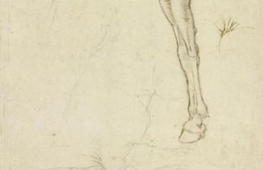 146 recto – Leonardo da Vinci