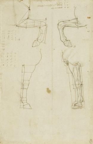 125 recto - by Leonardo da Vinci - Art encounter - Queen's Collection