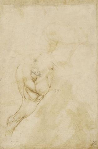 82 recto Leonardo da Vinci Queen's Collection