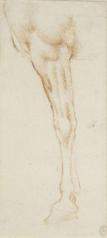 102 recto by Leonardo da Vinci Queen's Collection