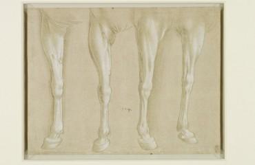 101 recto – by Leonardo da Vinci