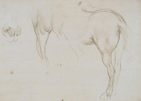 98 recto by Leonardo da Vinci Queen's Collection