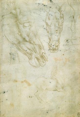 83 recto Leonardo da Vinci Queen's Collection