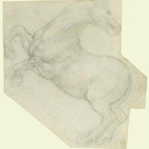 114 recto by Leonardo da Vinci Queen's Collection