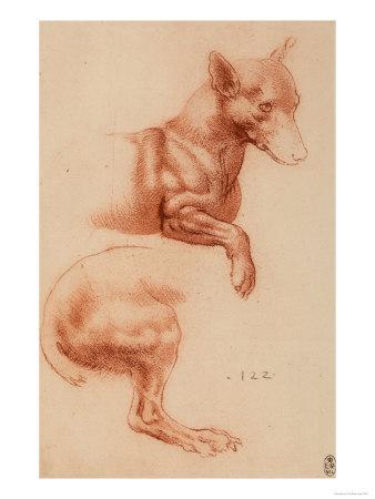 153 recto by Leonardo da Vinci Queen's Collection