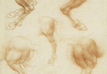 129 recto – by Leonardo da Vinci