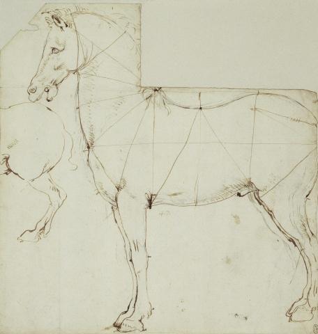 88 recto - by Leonardo da Vinci - Art encounter