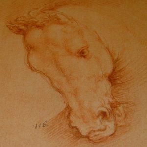 Leonardo da Vinci - The Queen's Collection