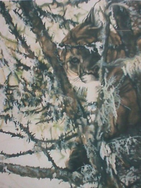 Camouflaged by artist Michael Dustin