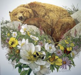 Bugged Bear – Mini Print – Bev Dolittle