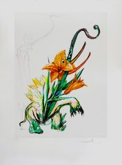 Lily (Elephant) 1972 by Salvador Dali (SOLD)