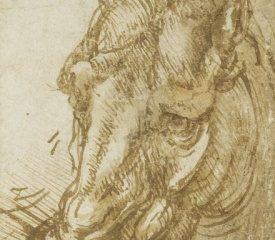 117 recto – by Leonardo da Vinci