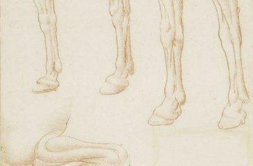 128 recto – by Leonardo da Vinci