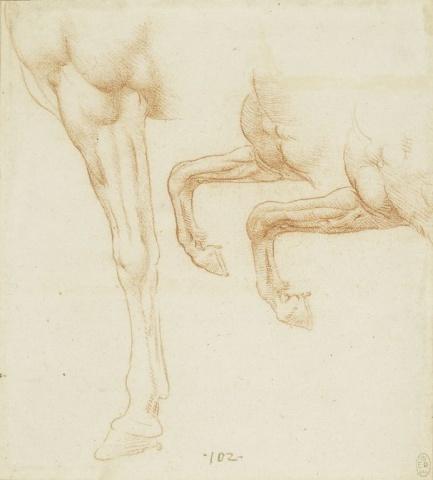103 recto by Leonardo da Vinci Queen's Collection