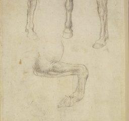 126 recto – by Leonardo da Vinci