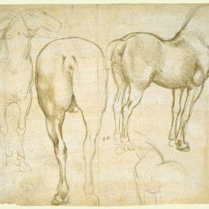 90 recto by Leonardo da Vinci Queen's Collection