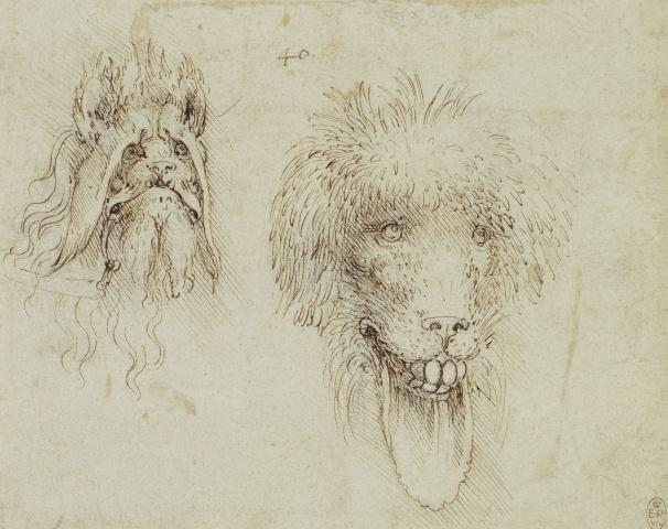 154 recto by Leonardo da Vinci Queen's Collection