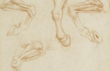 104 recto – by Leonardo da Vinci