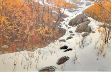 Double Back by Bev Doolittle