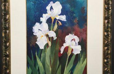 White Iris by Shirley Winslow